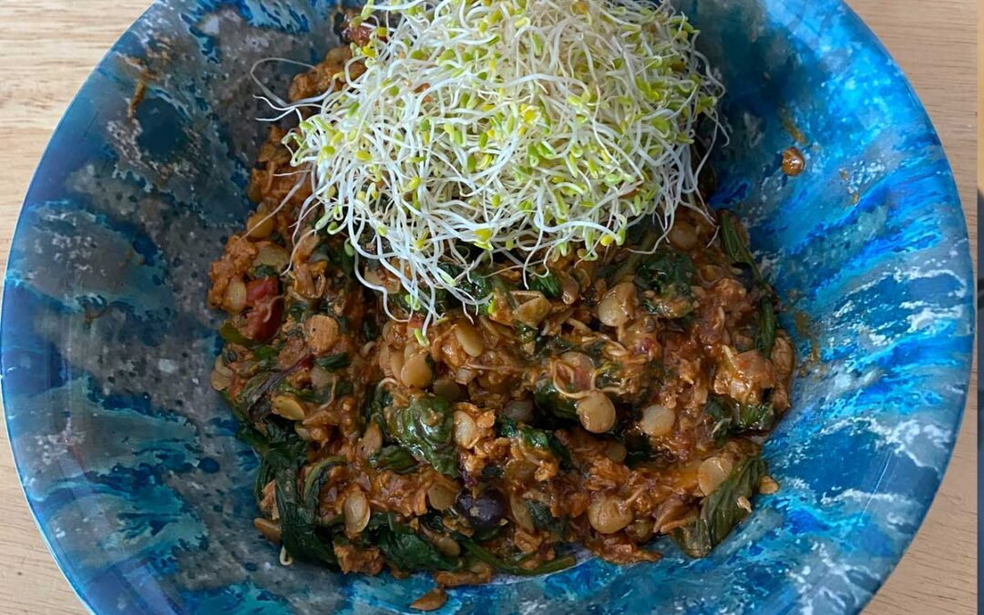 Curried Lentil Sprouts