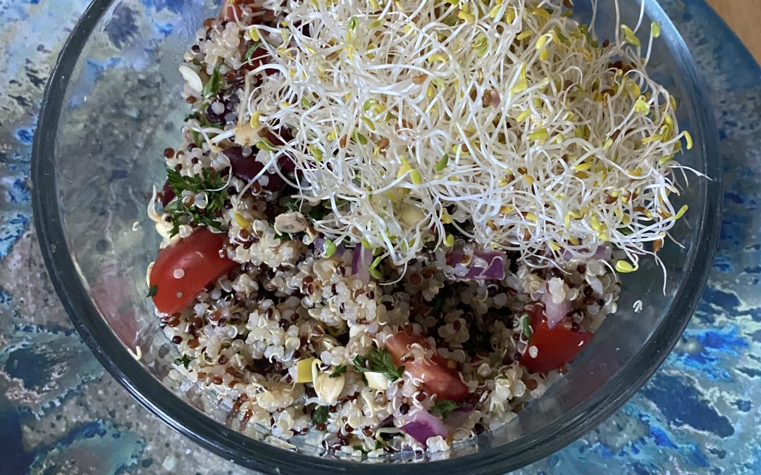 Quinoa and Sprout Salad